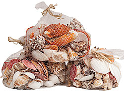 SHELL NETS of 750g EACH